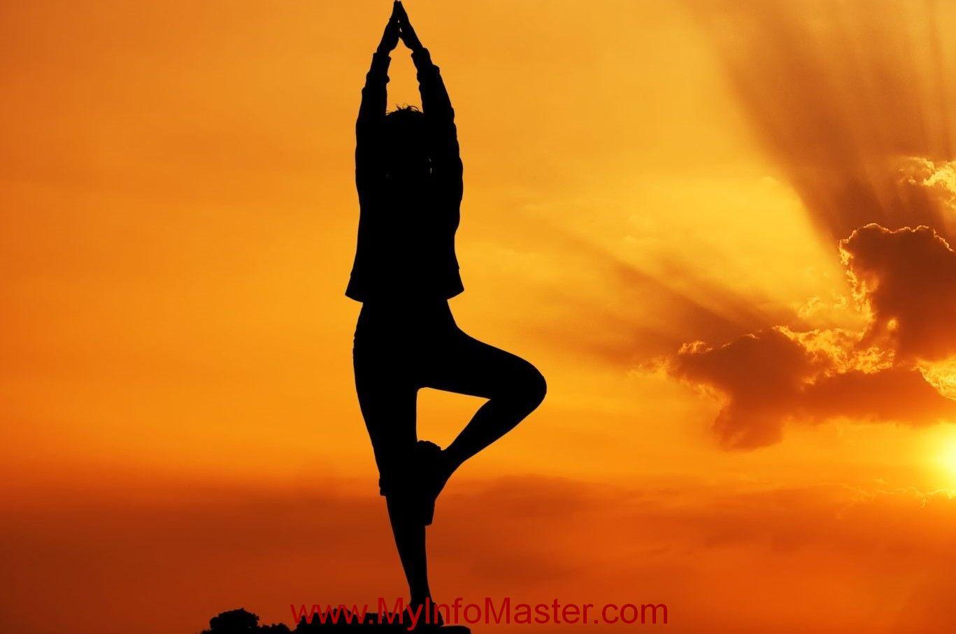 Yoga, gentle yoga flow, yoga facts, top hatha, stress yoga, yoga type, yoga memes, yoga results, yoga wuotes, how to yoga, yoga postures, best types of yoga