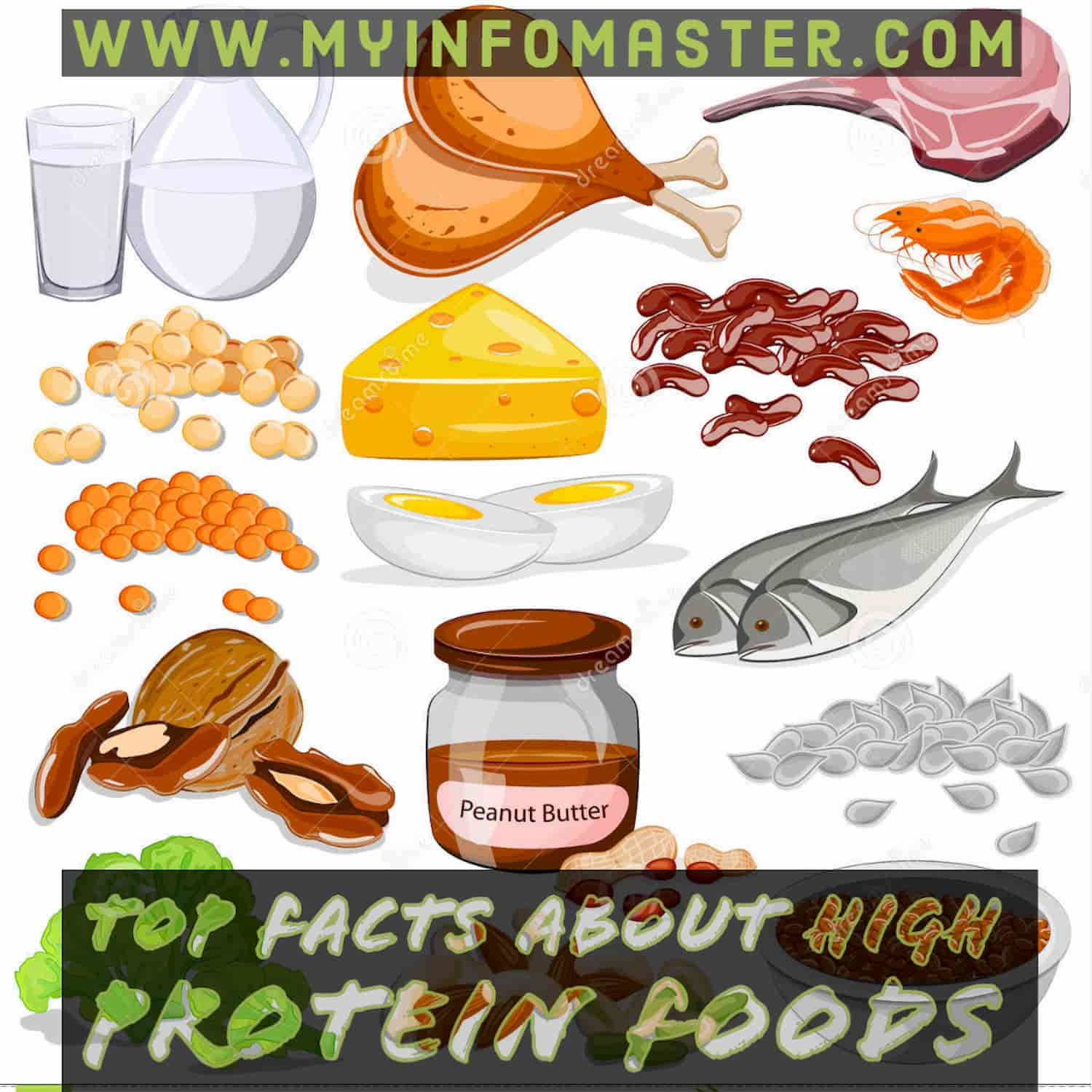 High protein foods, protein foods, high protein diet, protein rich food, high protein snacks, high protein breakfast, sources of protein, protein diet, protein snacks, high protein low carb foods, high protein vegetables, high protein low fat foods, high protein meals, high protein low carb diet, protein breakfast
